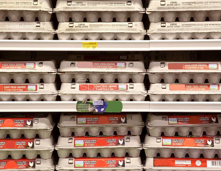 eggs grocery store healthy eggs free range eggs